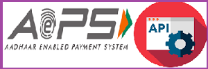 AEPS API